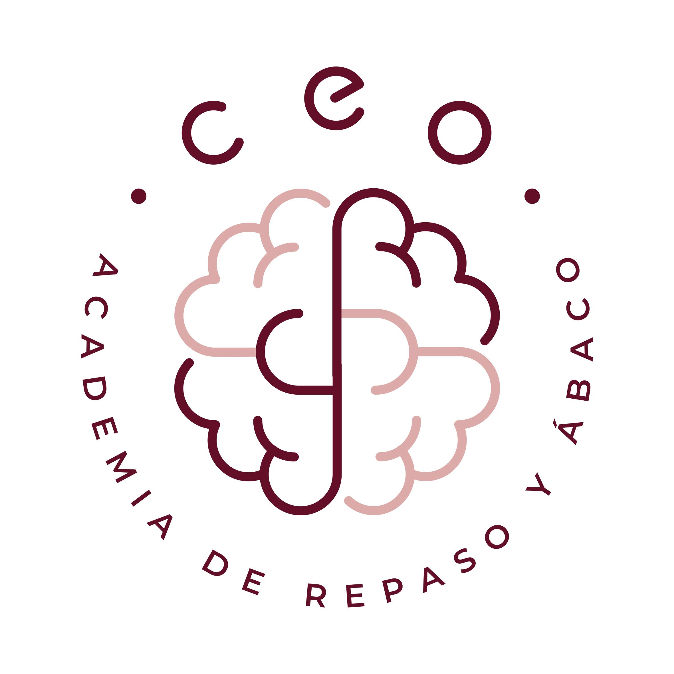 CEO Academia
