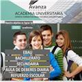 Academia  Avanza Economía