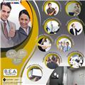 The Business English Academy