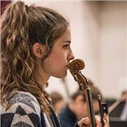 Cours particuliers de violon pour débutants/intermédiaires. Professeur avec plus de 3 ans d'expérience