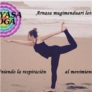 Instructora vinyasa yoga clases particulares y grupales privadas