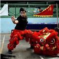 Clases de defensa personal y kung fu tradicional - hung kuen