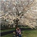 Clases particulares japonés con profesora nativa