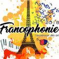 Clases de francés zonasur-caba