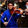 Doy clases particulares de violín o viola