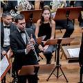 Clases particulares de clarinete o lenguaje musical