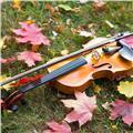 Clases particulares de violin y piano