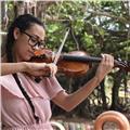 Clases individuales o grupales de violín y solfeo