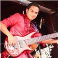 Cuerdas pulsadas: guitarra acústica, ukelele y bajo eléctrico. teoría musical para aplicar a exámenes universitarios