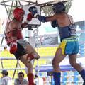Clases de muaythai/boxeo/defensa personal