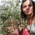 Chica italiana se ofrece para dar clases individuales de italiano