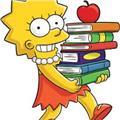 Apoyo escolar on line-clases de matemáticas-contabilidad-inglés-cívica-biología-geografía-lengua