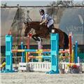 Profesora de equitación en madrid