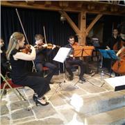 PROFESSEUR DE MUSIQUE - violon/solfège