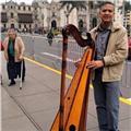 Clases de musica especificamente con el instrumento de arpa