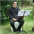Clases: solfeo, teoría musical, armonía, análisis musical (música clásica y moderna)