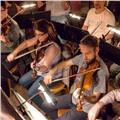 Clases de violin zona santa fe y 9 de julio y bella vista