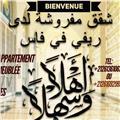 Je donne des cours en arabe avec un prix très intéressant