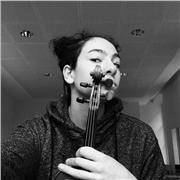 Cours de violon classique tout âge