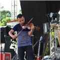 Clases online de violín y ukelele