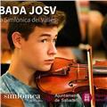 Estudiante de superior de música especializado en interpretación de violín ofrece clases de repaso, iniciación, ampliación... a alumnos de grado elemental o grado professional/medio en lenguaje musical, harmonía, análisis, violín