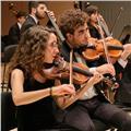 Se ofrecen clases particulares de violín para todos los niveles en castellón