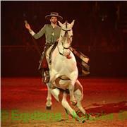 Bonjour, je réalise des spectacles internationaux à cheval. Je souhaite partager ma passion pour les chevaux à des jeunes intéressés