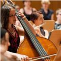Clases de contrabajo y lenguaje musical. profesora titulada superior y profesora interina