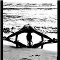 Traer a tu casa paz,silencio ,tranquilidad y bienestar!el equilibrio físico,mental y emocional,siendo consciente por el aire que lo estamos respirando