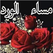 étudiant en langue arabe LLCER 3e annee,  Passionné par cette magnifique langue je vous propose des cours qui vous seront benefiques
