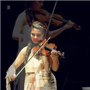 Professeur particulier de violon pour amateurs (enfants et adultes)