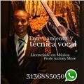 Licenciado en música con más de 8 años de experiencia en la enseñanza apacionado por la transformación cultural por medio de las artes.   servicios:  clase de guitarra, teclado, batería, técnica vocal, lenguaje música, violín/viola, bajo eléctrico, guitar