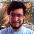 Profesor de literatura, lengua española y redacción